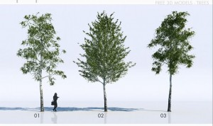 Free 3D max obj Trees Models Architectural Resources