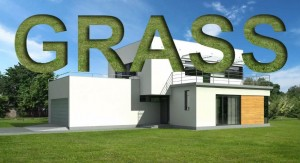 How to create realistic grass on architectural visualization still images
