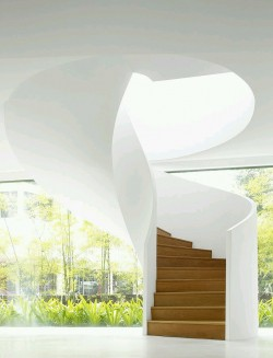 Beautiful Modern Stair Design- Wood & White