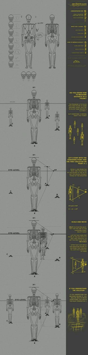 Simple Perspective On Human Body
