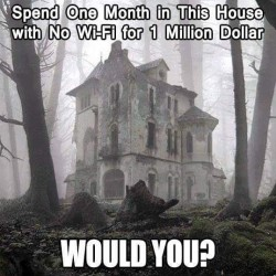 Spend one month in this House