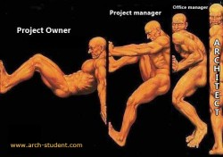 Project owner vs Project manager vs Office manager vs ARCHITECT
