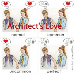 Architect's love